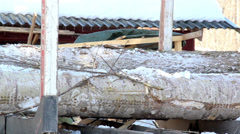 631 two big logs are carried by the log forwarder Stock Footage