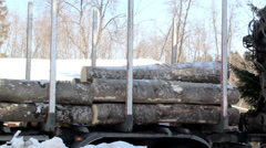 Unloading smaller logs by threes Stock Footage