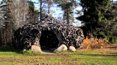 Witch house hut made out of big roots Stock Footage