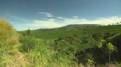 Costa Rican farmland Stock Footage