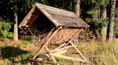 Small shed used to store hay and some sticks Stock Footage