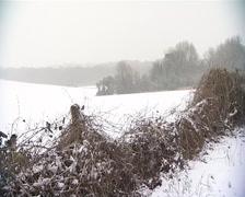 Snow in Kent countryside Stock Footage