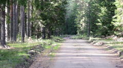 Trail in the forest Stock Footage