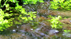 Water flowing along the rushing sound in the background Stock Footage