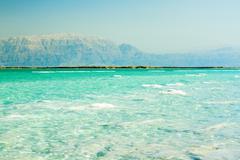 Rannikolla dead sea, israel Kuvituskuvat