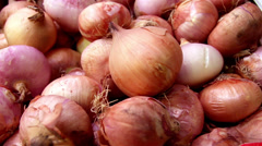 Piled red onions bulbs in a box Stock Footage