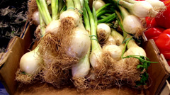 Close up image of eco spring onions Stock Footage