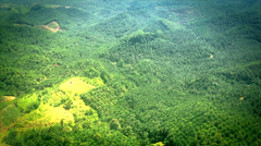 Malaysian Borneo aerial view of complete deforestation for palm oil plantations. Stock Footage