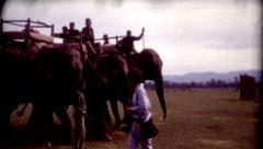 8mm old film elephants on a tour at Tiger Tops Lodge clip 2 Stock Footage