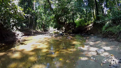 A fly-through of a riverbed in the jungles of Borneo. Stock Footage