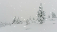 Dramatic winter landscape with coniferous trees Stock Footage