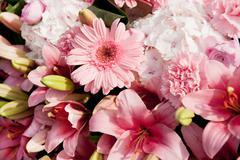 pink flower arrangement - stock photo