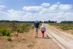 walking the dogs - stock photo