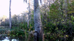 Tracking on Bayou opens up to reveal large swamp Stock Footage