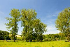 landscape in dutch limburg - stock photo