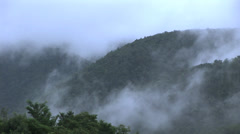 Mists on the hill Stock Footage