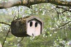 Stone Birdhouse Stock Photos