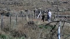 Hunting pheasants father son farm field HD 0139 - stock footage