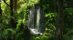 Madeira, waterfall in the Tropical Garden, Monte, Portugal Stock Footage