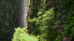 Water cascade, Risco Waterfall, nature, Madeira Stock Footage