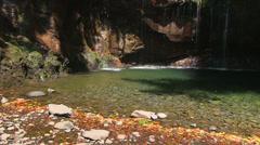 Water cascade, nature, Madeira Stock Footage
