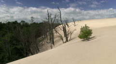 Moving sand dunes, Slowinski National Park, Poland Stock Footage