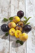 Sliced and whole yellow and black gages (Prunus domestica subsp. italica) on - stock photo