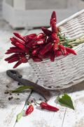 Red chili peppers (Capsicum) in white basket on white wooden table, studio shot - stock photo