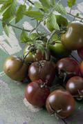 Sardian tomaatit (Solanum lycopersicum), studio shot Kuvituskuvat
