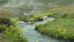 Hot spring creek with flowers, 11 Stock Footage