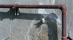 Dripping water old building pipe and tap HD 0146 Stock Footage