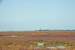 Desolate venice lagoon with the campanile of burano in the background Stock Photos