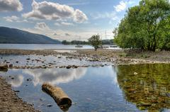 Log on the shore of Coniston Water Stock Photos