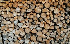 Cut tree trunks forming a huge outdoor woodshed Stock Photos