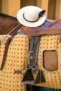 detail of chopper hat or castorena on the saddle of a horse's picardor, spain - stock photo