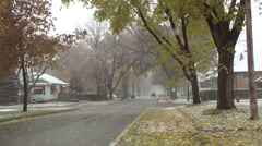 Autumn and wintry mix 2 Stock Footage