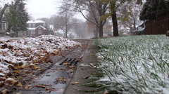 Wintry mix 2 Stock Footage