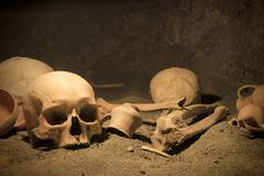 macabre archaeological scene - stock photo