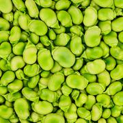 Fava or broad bean background or pattern. Stock Photos