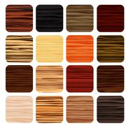 Stock Illustration of zebra wood abstract