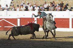 fermin bohorquez, bullfighter on horseback spanish, linares, jaen province - stock photo
