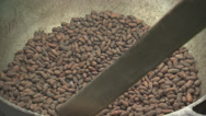 Stock Video Footage of Cocoa Beans Being Stirred