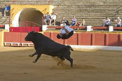 spanish recortador avoids the attack of a brave bull, spain - stock photo