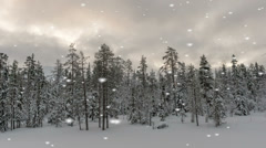 Winter scenery with falling snow Stock Footage