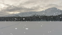 Desolate beautiful winter landscape in a snowfall Stock Footage