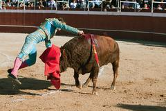 david valiente stabbing a bull - stock photo
