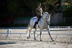 rider competing in dressage competition classic, spain - stock photo