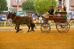 carriage pulled by two horses,andalusia,  spain - stock photo