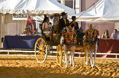 carriage pulled by two horses, andalusia,  spain - stock photo