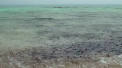 Tropical Rain at the coast of Indian Ocean. Maldives. Stock Footage